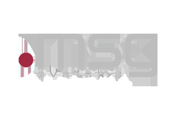 msg systems ag